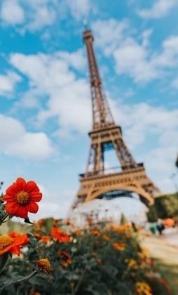 Франция: 30 удивительных фактов