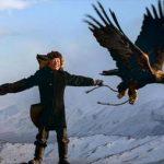 Беркут: небесный охотник степей