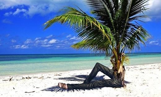 Ходячая пальма: миф или реальность?