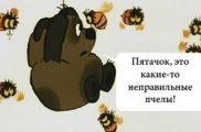 Безумный мёд рододендрона