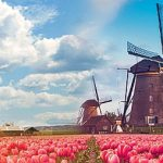 Нидерланды и Голландия – не одно и то же! Интересные факты.