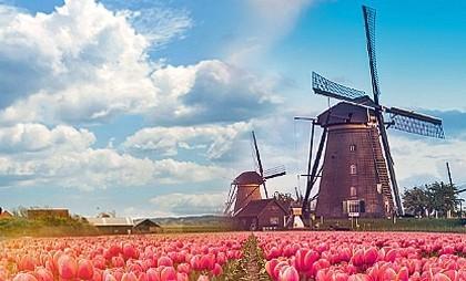 Нидерланды и Голландия - не одно и то же! Интересные факты.
