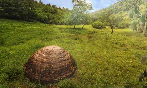 Трованты: камни, которые растут и двигаются.