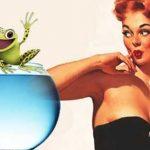Лягушка как тест на беременность
